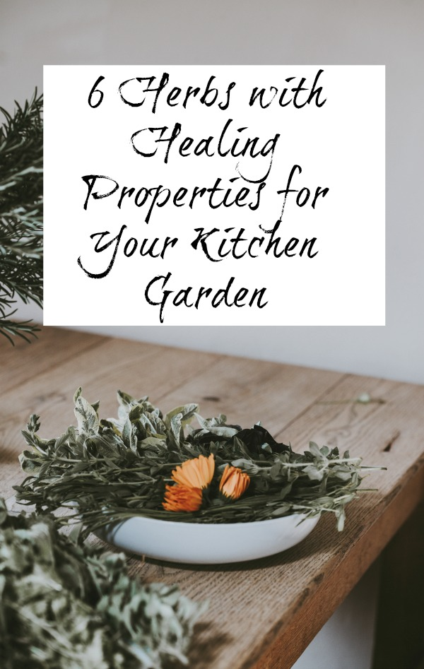 Herbs with Healing Properties for Your Kitchen Garden